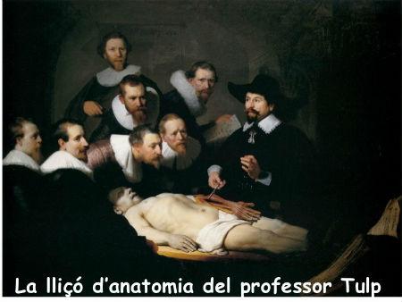 La lliçó d'anatomia del professor Tulp